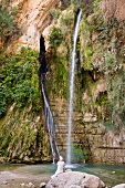 Tourist standing in front of waterfall, Wadi David, Ein Gedi National Park, Israel,