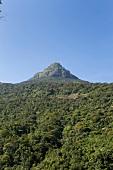 View of green mountain peak of Sri Pada mountain in Sri Lanka