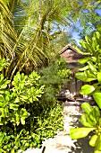 Dhigu resort bungalow in Dhigufinolhu island, Maldives