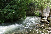 Water flowing in National park, Saklikent, Turkey