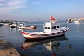 Türkei, Türkische Ägäis, Ayvalik, Fischerboote, Meerblick