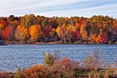View of colourful trees at bank of river, Nova Scotia, Canada