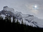View of Icefield Parkway covered with fog, Banff National Park, Alberta, Canada