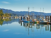 View of port in Vancouver island, Sooke, British Columbia, Canada