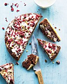 Chocolate cake with cranberries and white chocolate glaze