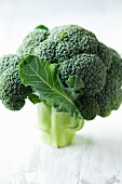 Broccoli with one leaf