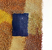 Various seeds of grain creating a frame