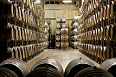 Barrels of wine in a wine cellar