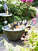 Party drinks in an old zinc bath tub filled with ice in a garden