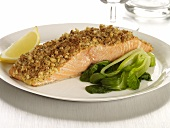 Crusted Salmon Fillet with Bok Choy and a Lemon Wedge