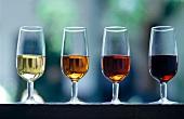 Verschiedene Sherrys in Sherrygläsern: Fino, Oloroso, Amontillado, Pedro Ximenez (Andalusien, Spanien)
