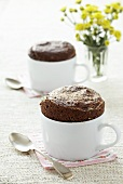 Chocolate soufflé in cups