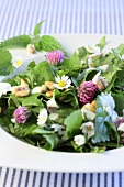 Stinging nettle salad with pine nuts and edible flowers