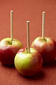 Three Apples on Sticks; Ready for Caramel