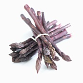 Two bunches of purple asparagus (Asparagus Pacific Purple)