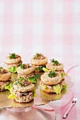 Toasted canapés with tuna fish cream