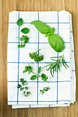 Various fresh herbs on a tea towel