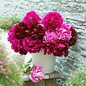 Pinkfarbene Pfingstrosen in Vase