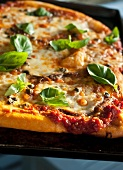 A pizza topped with anchovies, capers and basil