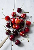 Sweet cherries some in a tea strainer