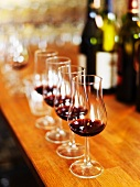 Glasses of red wine for a wine tasting session