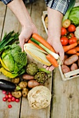 Hands holding corn cobs, carrots and spring onions
