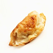 One Potsticker on a White Background