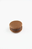A Single Chocolate Macaroon on a White Background