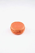 A Rose Macaroon on a White Background