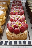 Raspberry Montebello Tarts with Pistachio Dacquoise and Pistachio Mousseline in Bakery Display Case