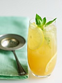 Tall Glass of Jasmine Iced Tea with Lemon and Mint; Tea Strainer