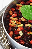 Fresh Mulberries in a Water Bath