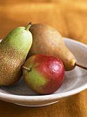 Three Assorted Pears in a Shallow Bowl