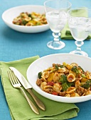 Orecchiette in Red Pepper Sauce with Italian Sausage and Broccoli