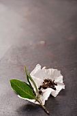 A bay leaf with spices on a piece of kitchen paper