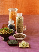 Various types on lentils and bean sprouts