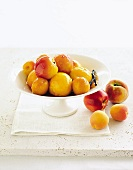 Poached stone fruits