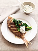 Red snapper with chermoula, spinach and coriander yoghurt sauce