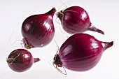 Four red onions