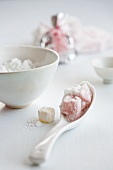 Ingredients for sweet winter soup (Japan)