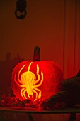 A Halloween pumpkin carved with a spider