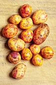 Red and yellow ullucos (ullucus tuberosus, South American root vegetables)