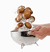 Brown mushrooms being washed in a sieve