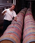 David Baverstock oenologist taking a sample from a barrel, Herdade do Esporao, Reguengos de Monsaraz, Portugal