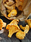 Fresh chanterelles spilling out of paper bag