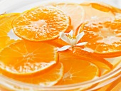 Orange Slices in Water with Small White Flower
