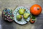 An arrangement of pears, apples, pumpkin and hydrangeas