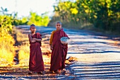 Novice Buddhist monks on a road