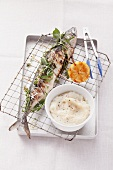 Grilled mackerel with herbs and Topinambur puree