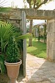 Grünpflanzen an Natursteinmauer neben dem Gartentor